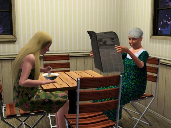 Micville Sims 3 Nachbarschaften Riverview Full House